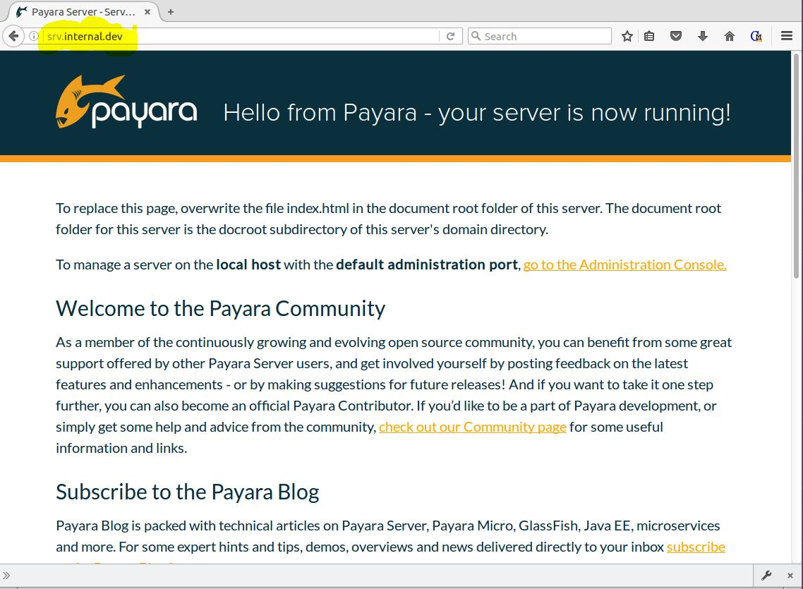 Figure 9 - Payara with srv.internal.dev proxied through NGINX
